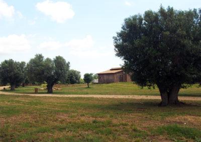 Camping_Fonte_Vulci_Resort_Agriturismo_Ristorante_maremma_toscana_lazio_montalto_di_castro_marina_di_montalto_riminino_19
