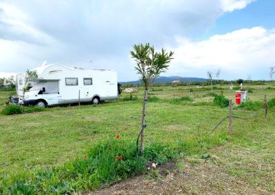 Camping_Fonte_Vulci_agricampeggio_Area_sosta_Camper_maremma_toscana_lazio_Terme_di_Vulci_Montalto_di_Castro_014